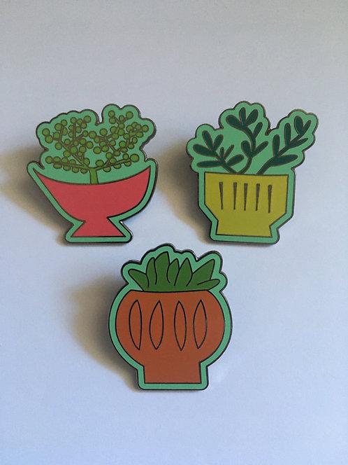 Set of 3 Succulent Pins - $30