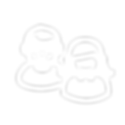 FIS_Webicons_r-04.png