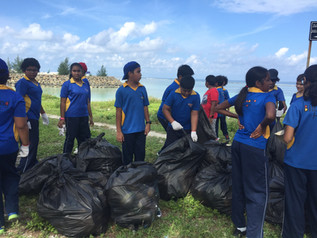 Billabong High International School students conduct beach cleaning in Hulhumale'