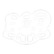 FIS_Webicons_r-03.png