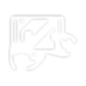 FIS_Webicons_r-01.png
