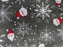 Santa and snowflakes.jpg