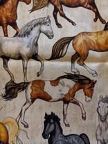 Beautiful Horse.jpg