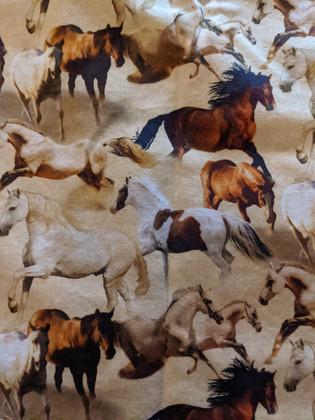 Small Horses.jpg