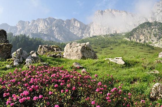 Yoga_Hike_Italië.jpg