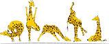 Girafjes.jpg