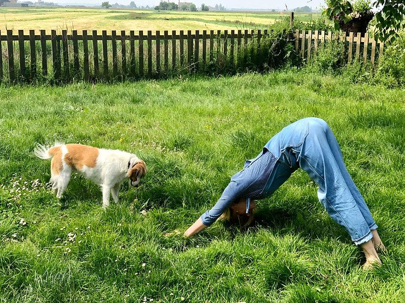 Yoga in de tuin met Neel.jpg