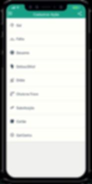 iPhone_Ações-min.png