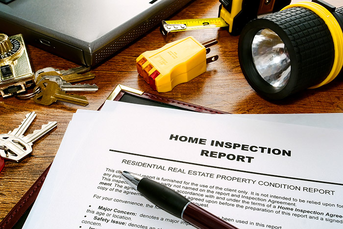 home-inspectionpic