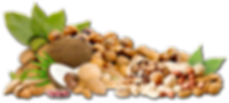 mix-dry-fruits1.png
