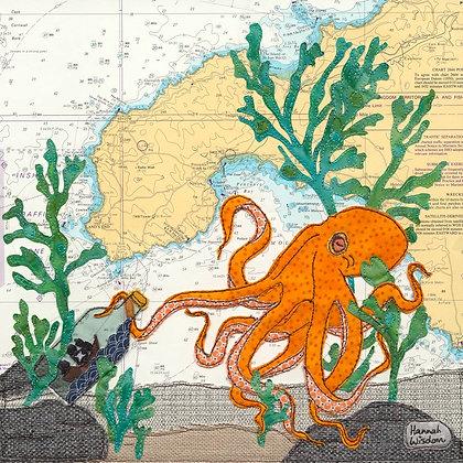 Octopus at Penzance