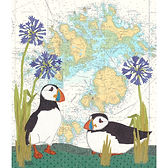 Puffins at the Isles of Scilly
