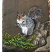 Squirrel Painted Slate