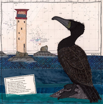 Cormorant at Eddystone