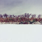 Series One Snowscape #3