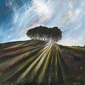 Coming Home Trees - Sunburst