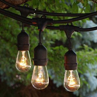 Medium  String Lights, 100 FT