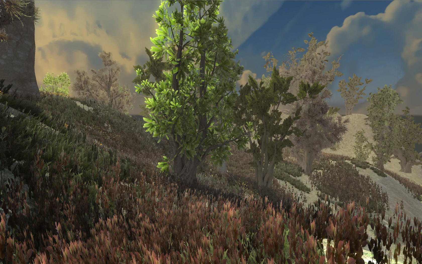 Realistic Scene5.jpg