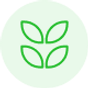 dioxyde-azote-capteur