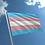 Thumbnail: Transgender Flag