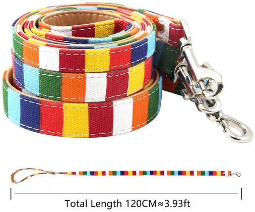 Pride Pet Lead (large)