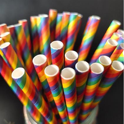 Pride Eco Friendly Paper Straws
