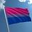 Thumbnail: Bisexual Flag