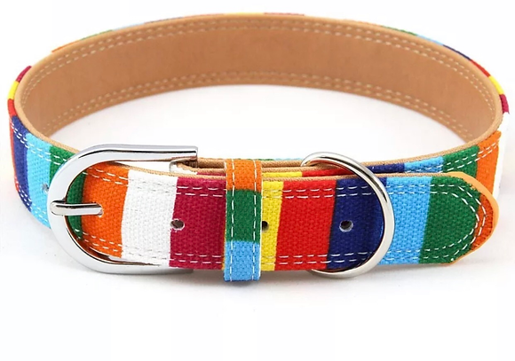 Pride Pet Dog Collar (large)