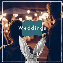 Gin Hare Weddings