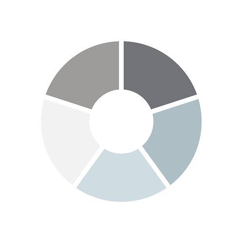 פלטת צבעים כחולים אפורים