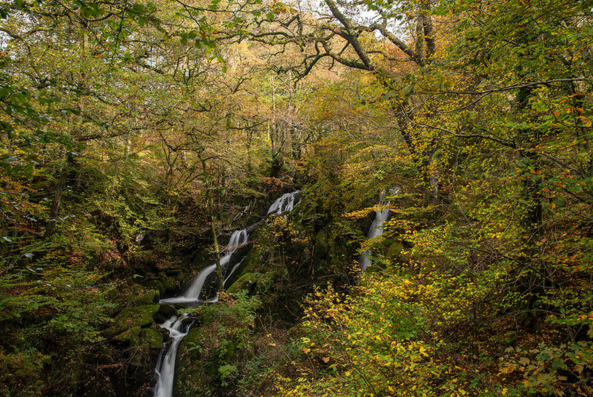 Stock Ghyll Force (autumn) 01