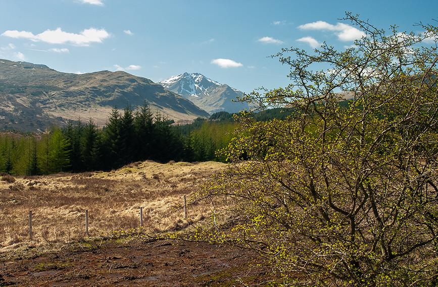 A view that is Scotland - Ben Nevis