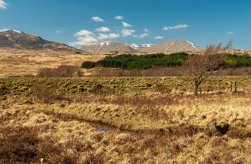 View across the A82 and Loch Tulla towards the Black Mount (Am Monadh Dubh) with Meall Beag (centre) & Mon (right) & Beinn Toag (left)