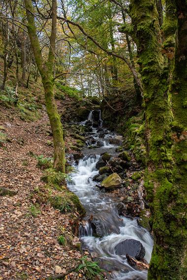 Tom Gill Waterfalls in Glen Mary 04