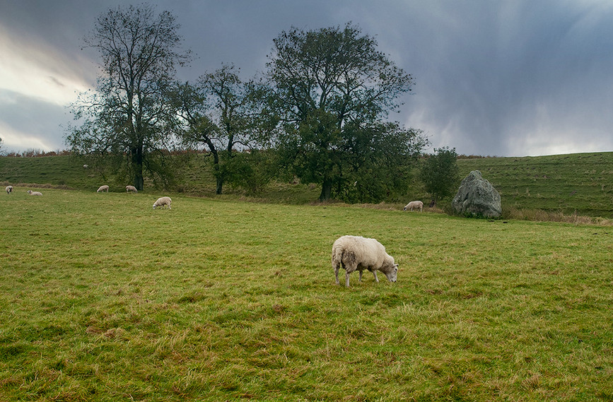 Views of Avebury & Individual Stones 27