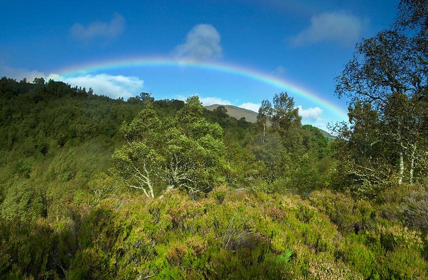 Rainbow across the Glen