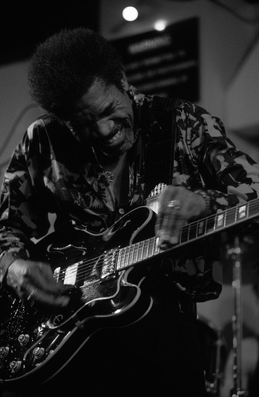 Luther Allison 05