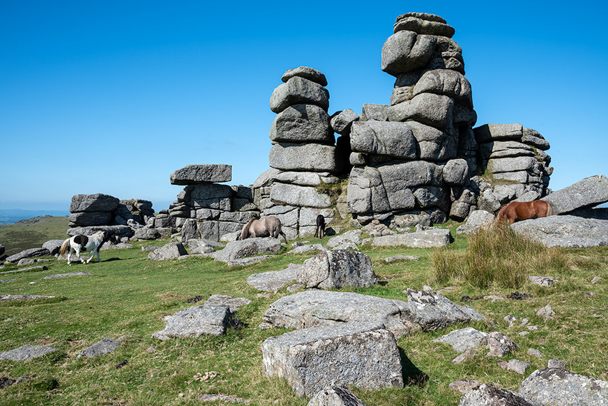 Granite outcrop on Great Staple Tor 21