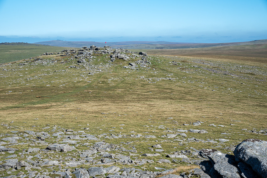 Roo's Tor from Great Staple Tor