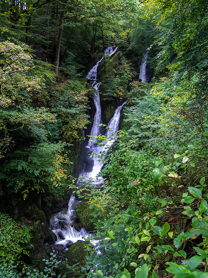 Stock Ghyll Force (summer) 01