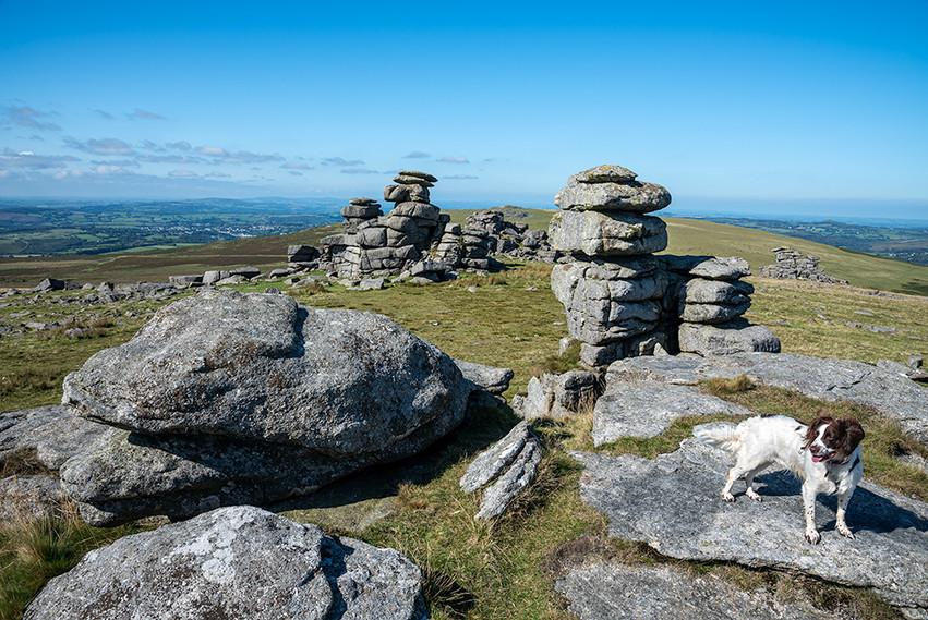 Granite outcrop on Great Staple Tor 12