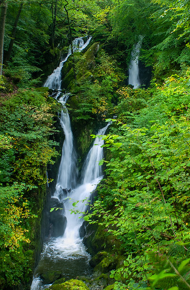 Stock Ghyll Force (summer) 03
