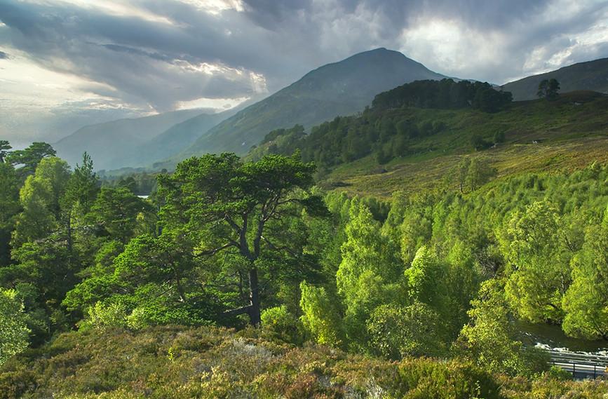 Glen Affric View 02