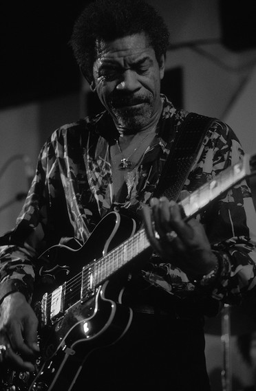Luther Allison 08