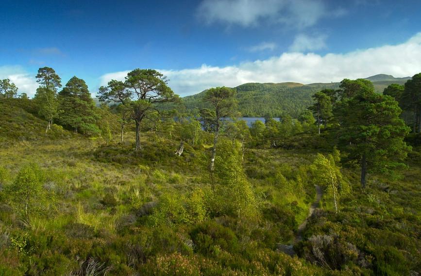 View towards Loch Beinn a Mheadhoin 02