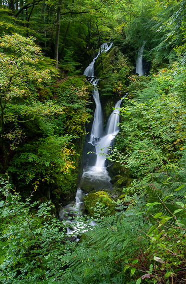 Stock Ghyll Force (summer) 04
