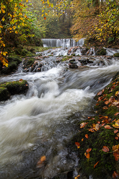 Lower Falls 02
