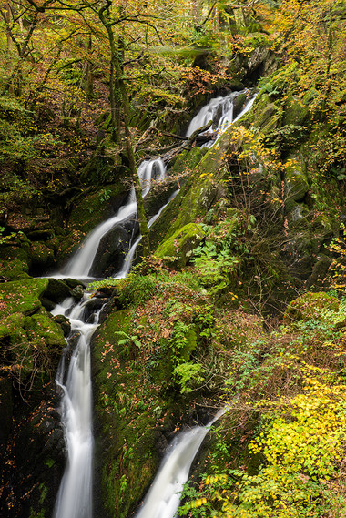 Stock Ghyll Force (autumn) 02