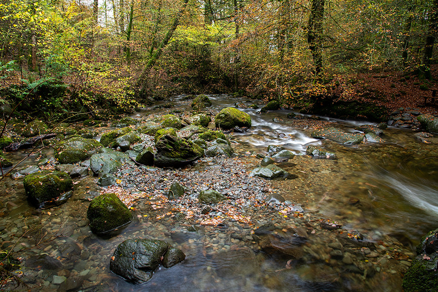 The Beck from Lower Bridge in autumn 01