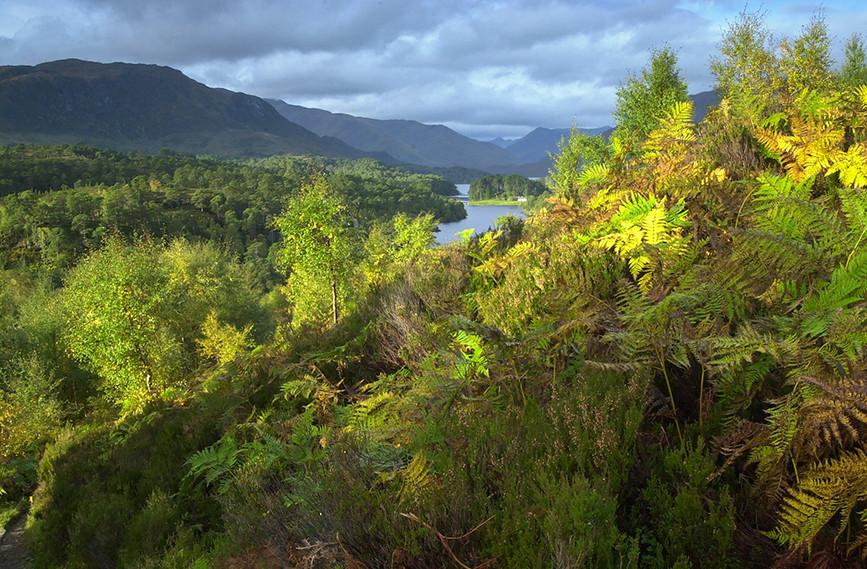 Meall a Ghraidh & Loch Affric